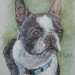 Betty - K. Rosten pastel pet portrait artist