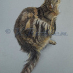 Cat-scratch, pet portrait artist Kate Rostenr