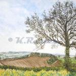 Hampshire Landscape, K. Rosten Artist.1