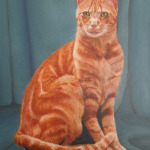 Tom-Cat. Oil painting on canvas; pet portrait artist. Kate Rosten